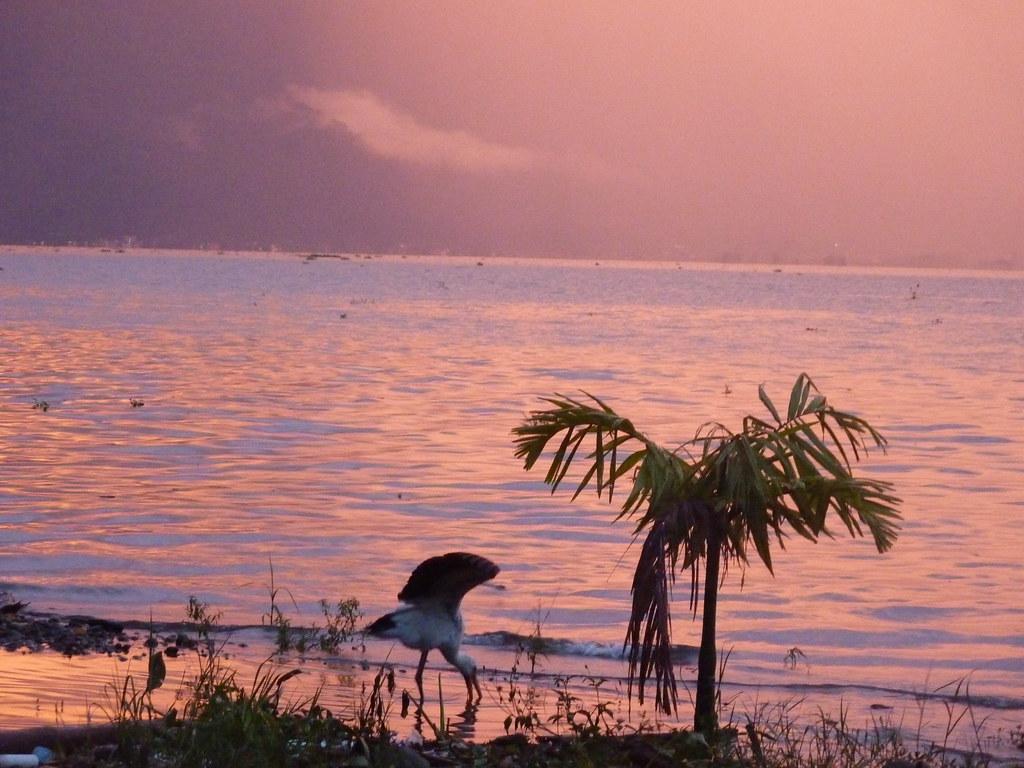 Sumatra-Lac Maninjau (82)
