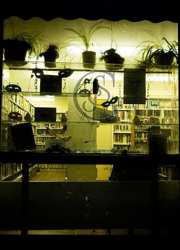Orillia Downtown - LibraryWindow