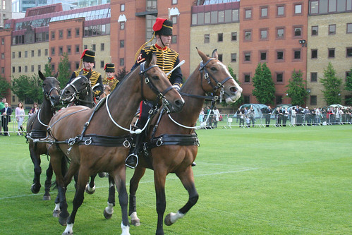 Light Cavalry HAC