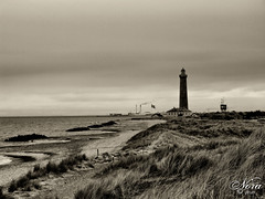 Skagen, Denmark (nora2810) Tags: lighthouse white holiday black beach nature sepia denmark sand dunes skagen fujifilmfinepixs9500