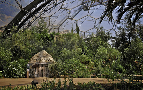 Hut in the Mediterranean Biodome