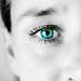 Ögon - blick