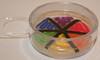 Streaked Plate #1 (Ashley_Keels) Tags: blue white rainbow dish streak plate screen bacteria petri ecoli agar