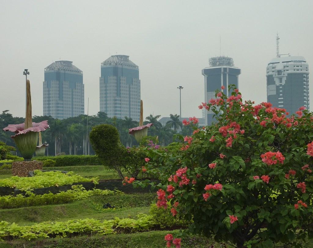 Java-Jakarta (37)
