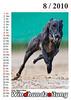 WHZ-Windhund-Kalender-08-2010