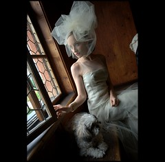 Anticipation (Petra Cross) Tags: wedding dog puppy bride waiting shihtzu couturedress bradfordcross petracross