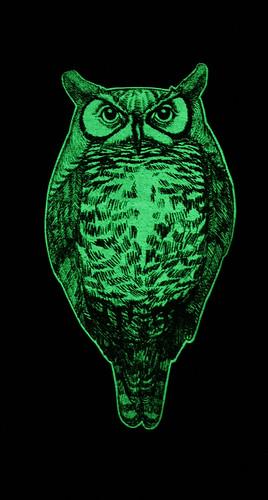glowl