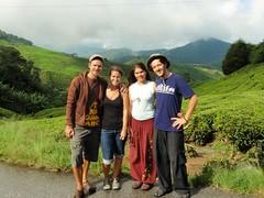 Antoine, Vero, Nat et Nico à Bow Tea Plantation