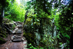 Stone Stairway (photo.klick) Tags: green nature minnesota stairs forest outdoors steps photoblog lush mn jol dnr temperanceriverstatepark katsingercom