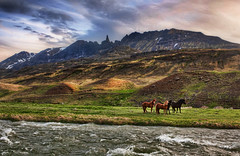The Impossible Mountains (Stuck in Customs) Tags: world travel wild sky horses foothills mountain mountains cold june clouds digital port island photography spiky iceland blog high scenery rocks europe dynamic stuck north scenic peak hills photoblog software processing imaging rough wilderness range narrow hdr tutorial trey rugged sland equine travelblog customs 2010 akureyri impossible crag northatlantic midatlanticridge ratcliff vlundurjnsson hdrtutorial volundurjonsson stuckincustoms northerniceland treyratcliff photographyblog stuckincustomscom helgakvam nikond3x