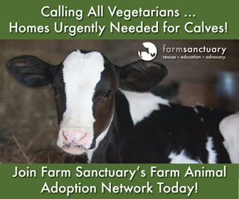 Farm Sanctuary's Farm Animal Adoption Network (FAAN)