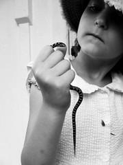snake handler 1