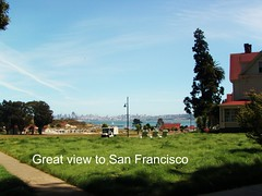 cavallo point near san francisco with green flowing grass and blue sky and large green tree