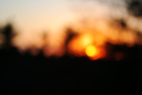 sunsetblut