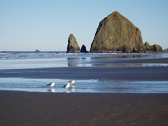 Haystack Rock Oregon Islands NWR