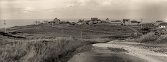 Tolsta on Glass (Wiesmier) Tags: 4x5 cropped mpp isleoflewis glassplate northtolsta ilfordr25
