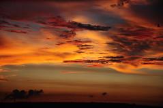 DSC_0332  (michaeliao27) Tags: sunset         tones sky taichung taiwan rocintaiwan
