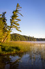 Otter Lake (rdmegr) Tags: sleepingbeardunes lakescapes