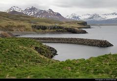 Borgarfjörður Eystri, Iceland (JH_1982) Tags: nature landscape scenery scenic fjord mountains mountain ice icy water peaks borgarfjörður eystri borgarfjördur borgarfjordur iceland ísland island islandia islande islanda islândia 冰岛 アイスランド 아이슬란드 исландия आइसलैण्ड آيسلندا