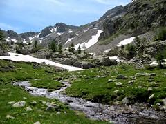 combe de Trecolpas (b.four) Tags: ruisseau creek ruscello montagne mountain montagna combedetrecolpas saintmartinvésubie hautevésubie alpesmaritimes coth5 ruby5 ruby10 ruby15