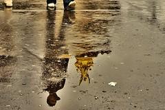 PARIS-REFLEJOS... (LUIS FELICIANO) Tags: paris france olympus francia spartacus carrete reflejos imagesgooglecom e510 theperfectphotographer imagessearchyahoocom googlel