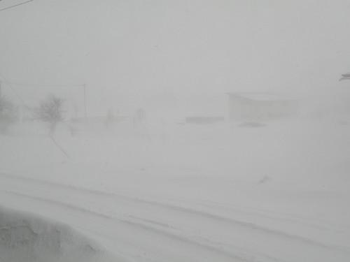 2010  正月 吹雪