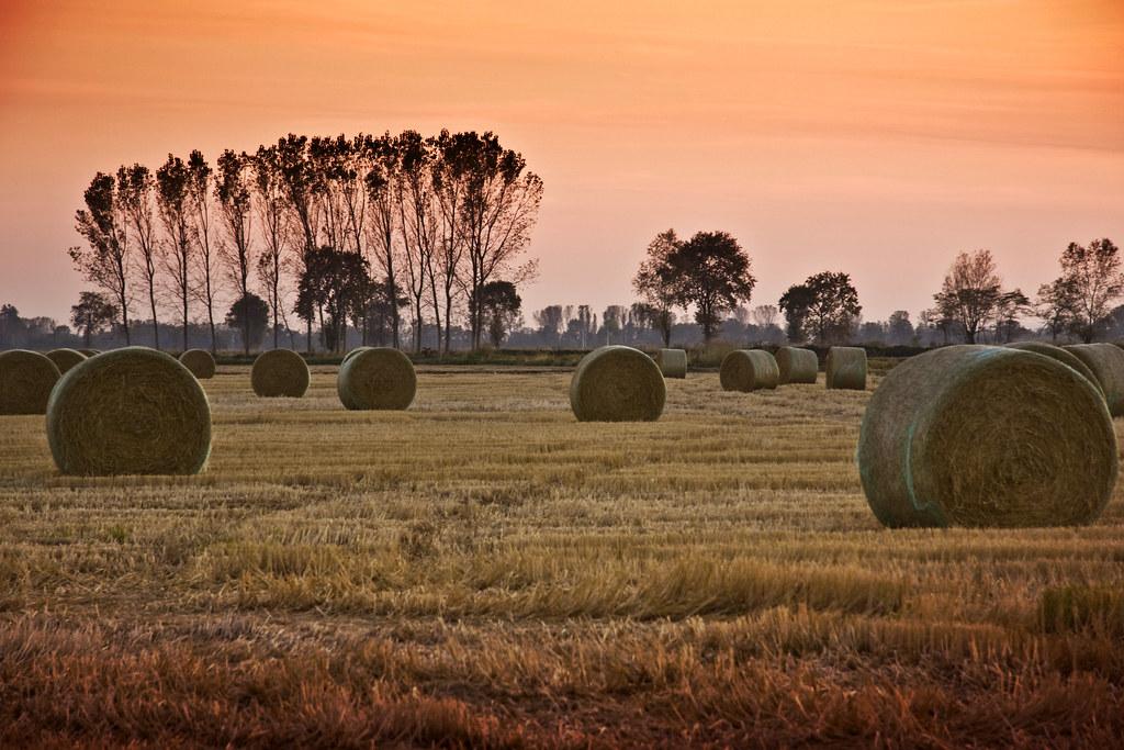 Hay Bale Sunset #2