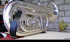 (Irene_M) Tags: reflection tuba visualart brassband