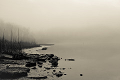 17 | 2010 (jennifer glass) Tags: winter beach water grass fog creek landscape virginia rocks foggy almostbw shore yorktown colonialparkway lightroom yorkcounty yorkriver explored indianfieldcreek yip2010