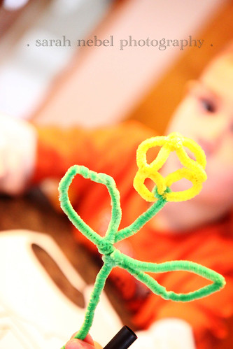. pipe cleaner crafts .