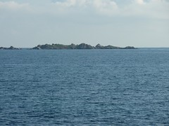 Ile Porraggia depuis Marina di Fiori