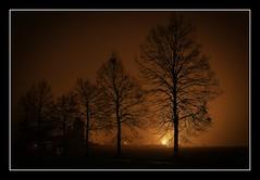(Gilmoth) Tags: winter fog utata nebbia inverno varese tw 2010 schiranna 21100 thursdaywalks sonyalpha700 sony16105 utata:project=tw196