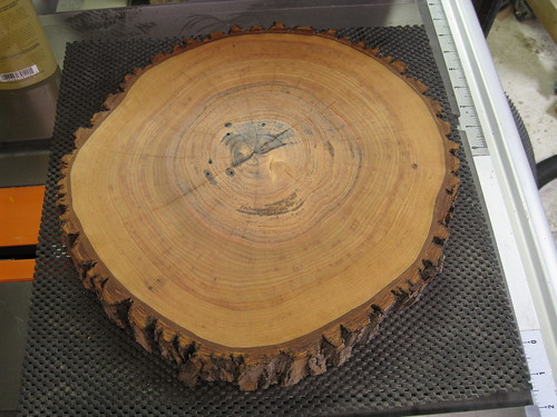 butcher block oil applied to log round end grain