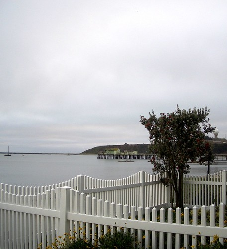 west view from flat rock yard.jpg