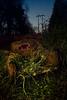 Last Harvest (LukeOlsen) Tags: usa abandoned field night oregon truck portland powerlines pw strobist 580exii lukeolsen pdxstrobist