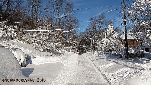 2010 Feb 7 jj