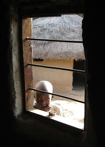 Boy in Window