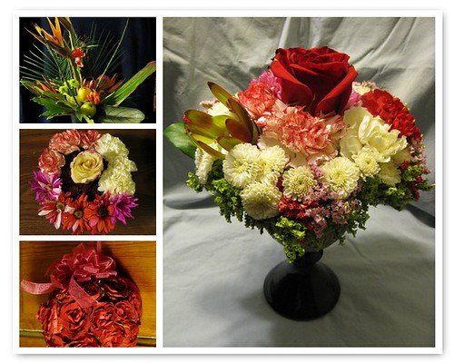 Diene's Floral Portfolio