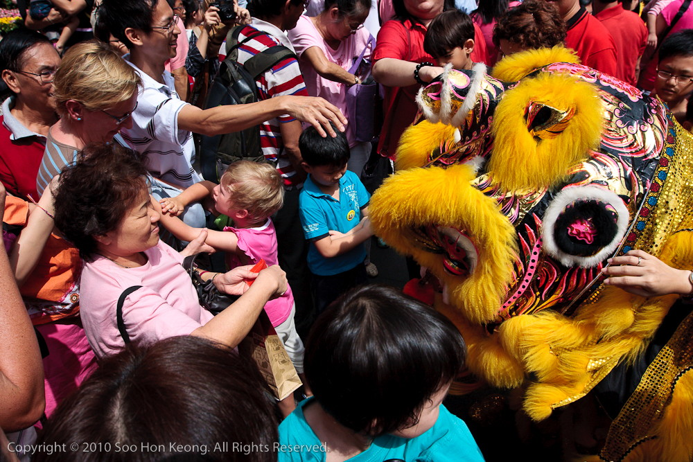 Lion Dancing in the Crowd @ Pavilion, KL, Malaysia