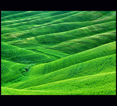 i need some green - and you? (klaus53) Tags: green italia tuscany toscana rollinghills mywinners updatecollection blinkagain blinkagainfrontpage bestofblinkwinners