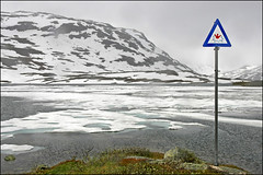 brrrr.. swimming (heavenuphere) Tags: lake snow mountains cold ice sign norway landscape gi brrrr noorwegen haukeli colourversion haukelifjell haukeligrend