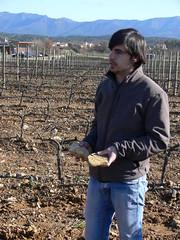 Terres granítiques i de llicorella ideals per la mineralitat i elegància dels seus vins