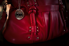 My Fave Thing {THE Epiphanie Bag}