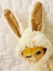 Aury the bunny