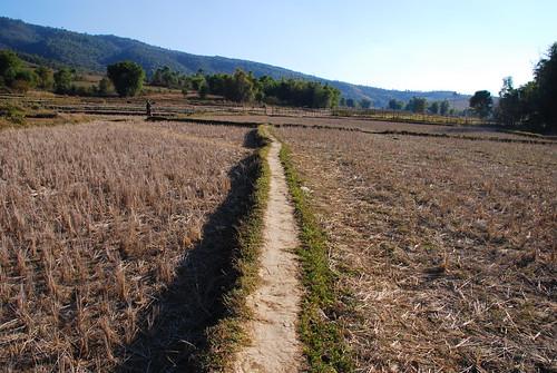 Plain of Jars, Site 3