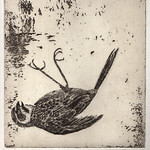 "Roxanne McGovern <a style=""margin-left:10px; font-size:0.8em;"" href=""http://www.flickr.com/photos/7331163@N05/4435124953/"" target=""_blank"">@flickr</a>"