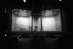 ZooA123 (Joe_Cooper_) Tags: white black london zoo a1 coolscan 9000 18mm fotospeed widerama legacypro