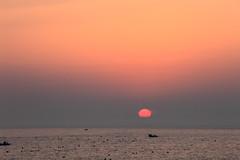 MiNe-5DII_100-4532UG (MiNe (sfmine79)) Tags: park sunset sun landscape harbor photo spring taiwan sunny gps 台灣 台北 canonef70200mmf28lisusm canoneos5dmarkii