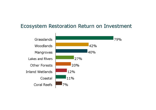 Ecosystem Restoration Return on Investment
