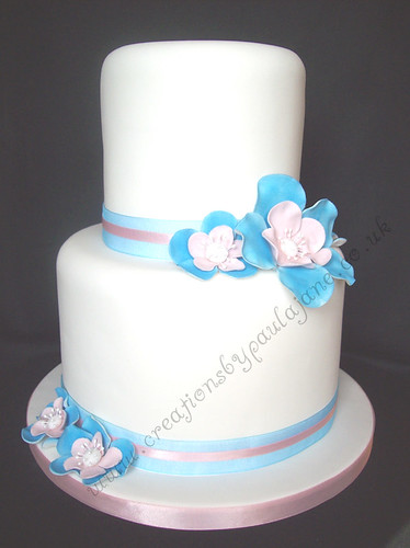 wedding cakes blue and pink special day cakes s most recent flickr photos picssr 23910